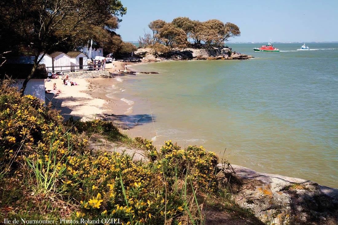 ile-noirmoutier-bois-de-la-chaize-plage-crique