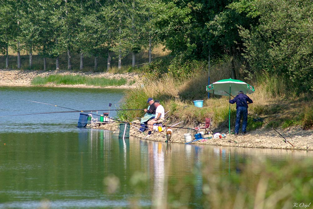 peche lac Apremont vendée
