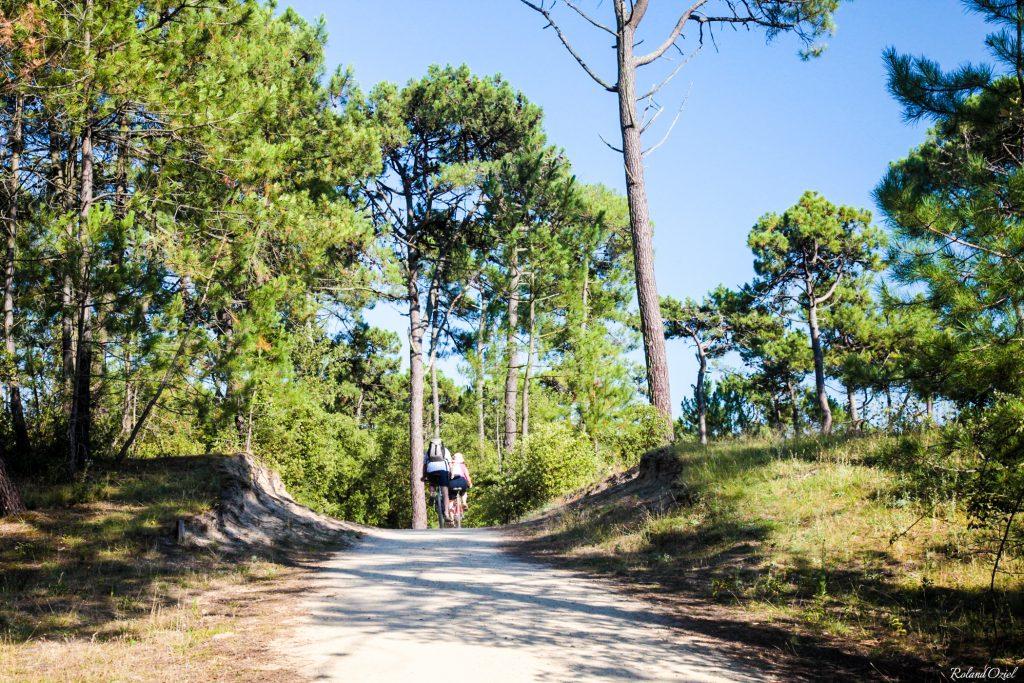 balade à vélo sur les sentiers près du camping