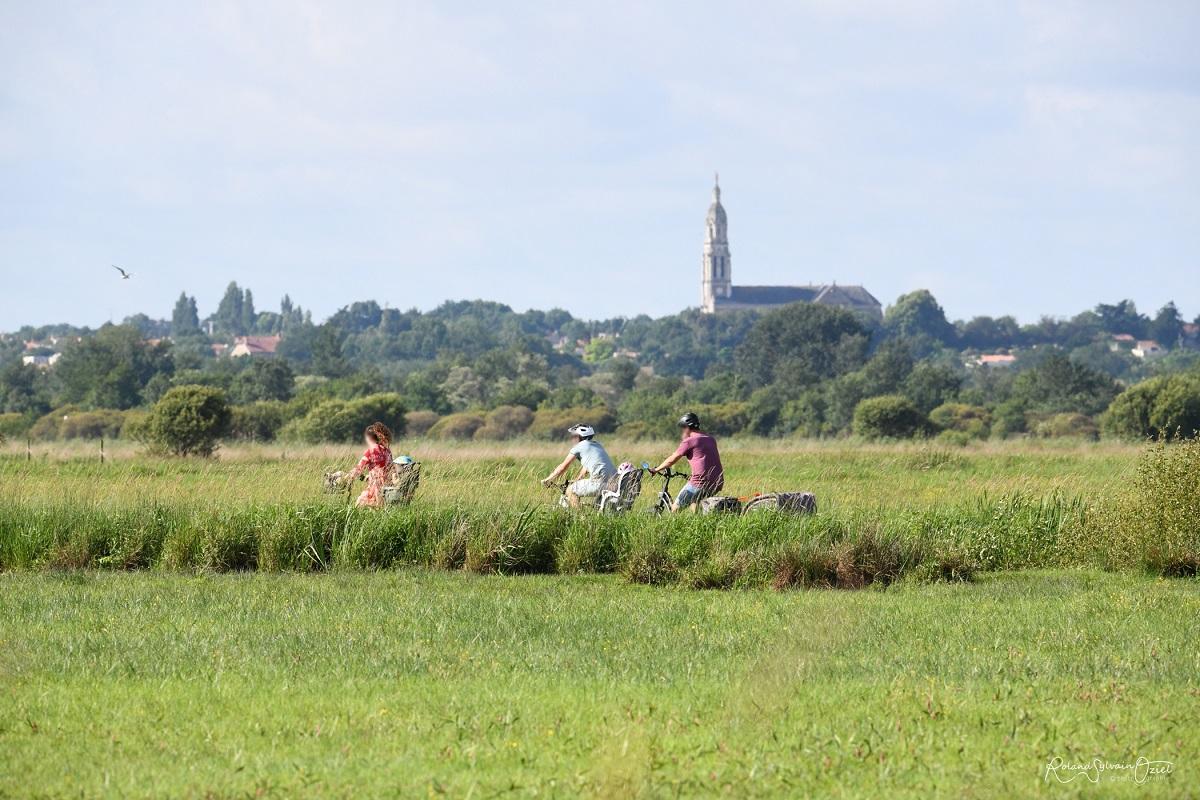 camping situé au coeur de la nature en Vendée